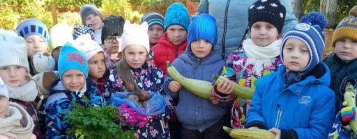 Урожай группы №3 «Калинка»